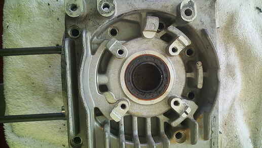 crank case stator half outside